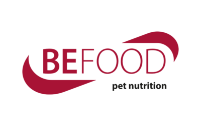 Sistema anticaduta (linea vita) presso stabilimento BEFOOD di Acquasparta